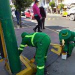 Municipalidad mejora Ornato en las bermas y veredas de la Avenida Jesús